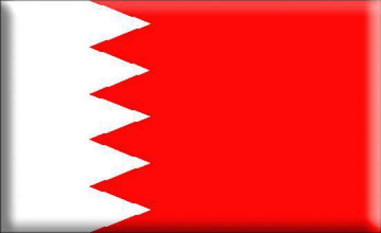 صورة التمييز ضد الشيعة في البحرين يتخذ طابع مؤسساتي و تعيينات الشيعة في المناصب الأمنية العليا 0%