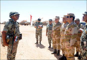 صورة مصادر تكشف عن مشاركة 800 من القوات المصرية في العدوان العسكري على اليمن