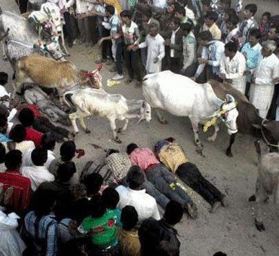 Photo of الغارديان: كيف قتل متطرفون هندوس مسلما لأكله لحم البقر؟