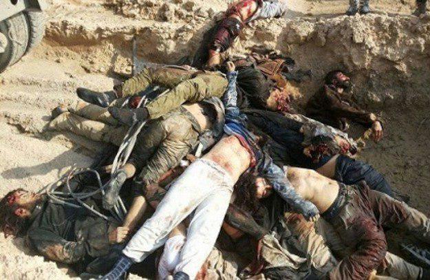 صورة مقتل 500 ارهابي من النصرة بينهم أمير معسكرات التدريب بريف حماة
