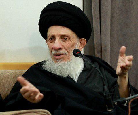 صورة المرجع الحكيم: المواكب الحسينية هي هدف سامٍ وطريق لهداية الناس