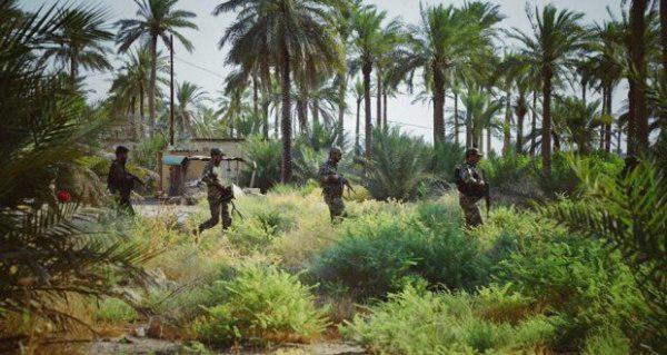 صورة العراق: العثور على مضافة لداعش الارهابي تحوي أسلحة ومؤن غذائية ومتفجرات في الطارمية