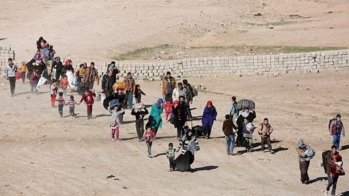صورة ديالى تكشف عن انخفاض اعداد نازحيي مخيمات الوند بنسبة 80%
