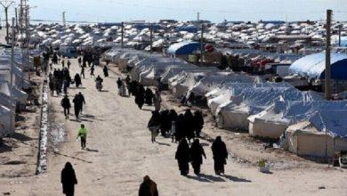 صورة دراسة: أكثر من 600 من أطفال داعش الإرهابي في أوروبا محتجزون في سوريا