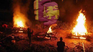 صورة سريلانكا تحرق جثث المسلمين المتوفين بكورونا.. واللاعنف تطالبها بالتوقف