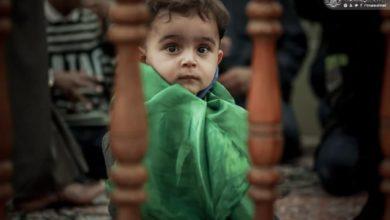 صورة بالصور.. نقاء الطفولة والمراسيم العبادية لها رونقها في مرقد الإمام عليٍّ عليه السلام