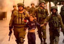 صورة اللاعنف العالمية تستنكر الأعمال التعسفية للسلطة الإسرائيلية