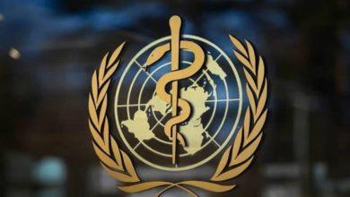 صورة الصحة العالمية: البيئة العراقية غير حاضنة لفيروس نيباه