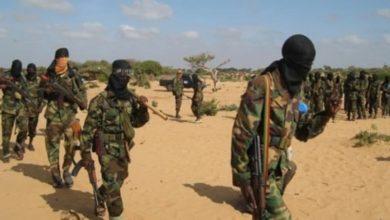 """صورة مصادر تفيد باستهداف شيعة نيجيريا من قبل الإرهابيين بـ """"دعم حكومي"""""""
