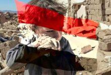 صورة منظمة اللاعنف العالمية تدعو الدول العربية والإسلامية لوقف الحرب في اليمن