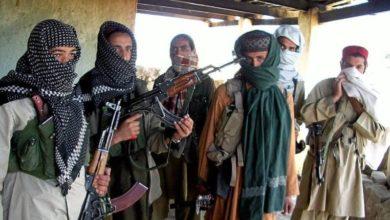 صورة القوات الأفغانية تقتل 44 عنصراً من طالبان الإرهـ،ـابية في عمليات أمنية