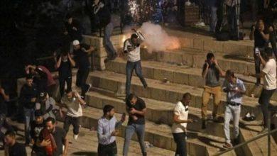 صورة العفو الدولية تتهم إسرائيل باستخدام القوة الوحشية ضد الفلسطينيين