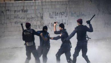 صورة عضو في البرلمان الأوروبي تنتقد حالة حقوق الإنسان في البحرين