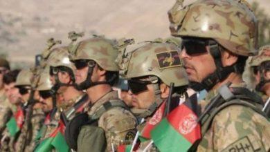 صورة طالبان الإرهـ،ـابية تعدم 22 عنصراً من الكوماندوز الأفغاني بعد استسلامهم