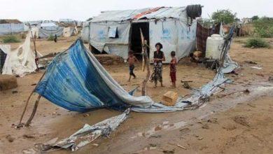 صورة اليمن أمام تداعيات كارثية.. ووكالات أممية قد تلجأ لتخفيض برامجها في البلد المنهك