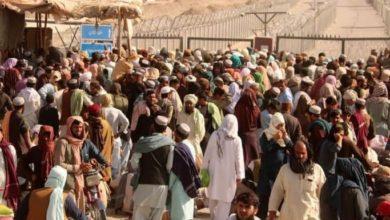 صورة الأمم المتحدة: نصف مليون أفغاني يمكن أن يفروا عبر الحدود