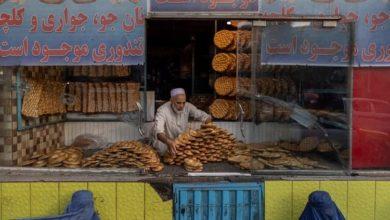 صورة الأمم المتحدة: مليون طفل أفغاني قد يموتون نتيجة نقص الغذاء