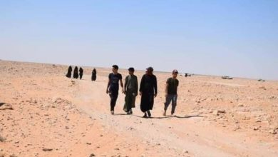 صورة من الحدود السعودية.. العاشقون يتوافدون للمشاركة بذكرى الأربعين في كربلاء المقدسة (صور)