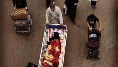 صورة في الطريق إلى كربلاء..مواطنٌ عراقيّ يحمل أمّه المسنّة على سرير طبّي لكي لا تُحرم من فيض الأربعين الحسينيّ