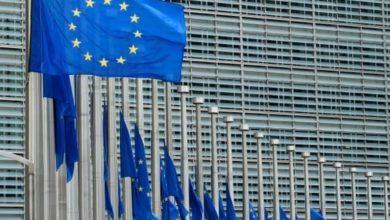 صورة المفوضة الأوروبية تعلن اهتمامها بأوضاع حقوق الإنسان في البحرين والمعتقلين السياسيين