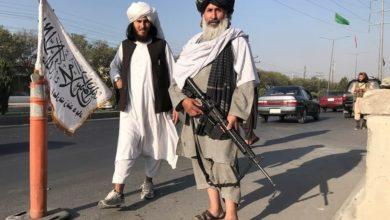 صورة القتل الوحشي للقاضيات والأطباء والناشطين الاجتماعيين في أفغانستان
