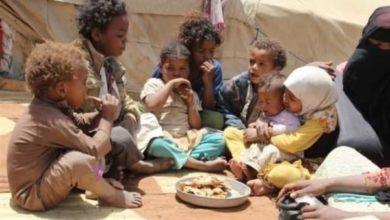 صورة الأمم المتحدة تحذر من أن استمرار انهيار العملة يهدد بتفاقم أزمة الجوع في اليمن