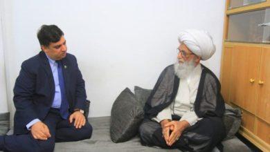 صورة المرجع النجفي: توطيد العلاقات بين العراق وباكستان يصب في تعضيد البلدين المسلمين