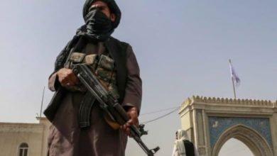 صورة هيومن رايتس ووتش: طـ،ـالبان الإرهـ،ـابية تجبر الشيعة على الفرار من منازلهم