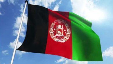 صورة وسائل إعلام: 50 د1عشياً يسلمون أنفسهم في أفغانستان