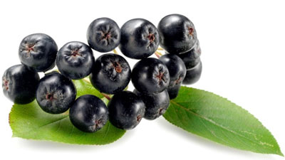 Photo of Berries strengthen conventional cancer drug treatment (Health)