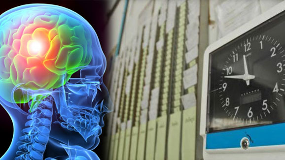 Photo of Study reveals long-term shift work may damage brain