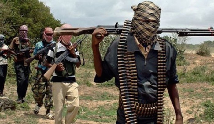 Photo of At least 30 people killed in Boko Haram raids on villages in Nigeria