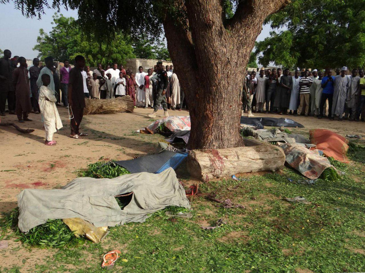 Photo of Multiple suicide bomb blasts in Nigeria kill 19 and leave 23 injured