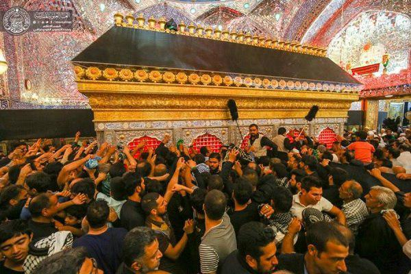 Photo of Pilgrims begin their march with visiting Imam Ali Holy Shrine + Photos