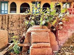 Photo of Gujarat: 400-year-old mosque shows up as cobwebs of encroachments clear