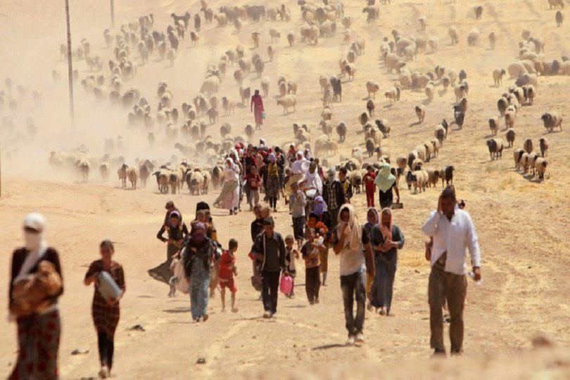 Photo of UN: Identification of 160 ISIS terrorists on Yazidi massacres