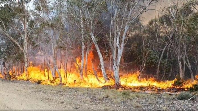 Photo of Australian bushfires flare again