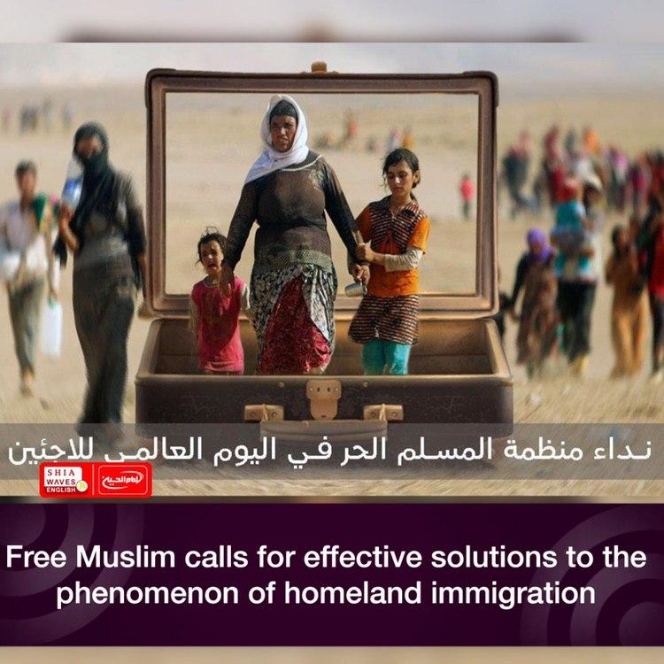 Photo of Free Muslim calls for effective solutions to the phenomenon of homeland immigration