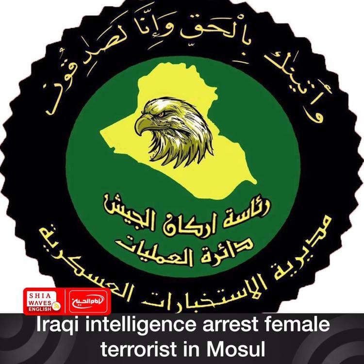 Photo of Iraqi intelligence arrest female terrorist in Mosul