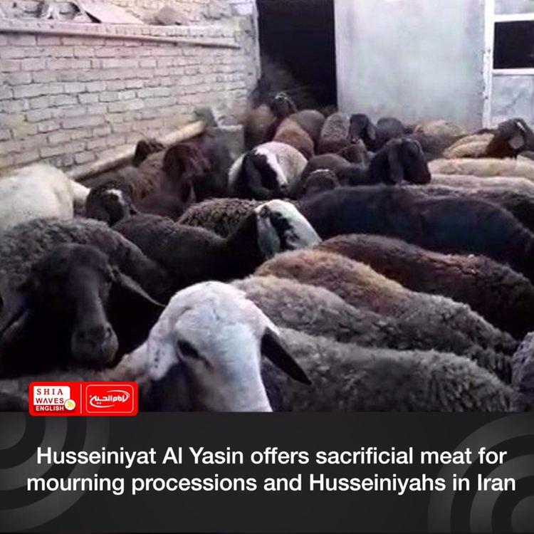 Photo of Husseiniyat Al Yasin offers sacrificial meat for mourning processions and Husseiniyahs in Iran