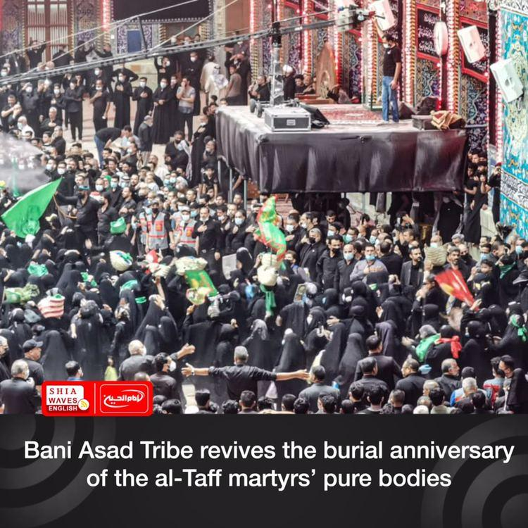 Photo of Bani Asad Tribe revives the burial anniversary of the al-Taff martyrs' pure bodies
