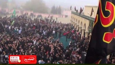Photo of International organization calls for an International Shia Day