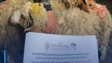 Photo of Misbah al-Hussein Foundation provides sacrificial meat to poor and orphan families in Karbala