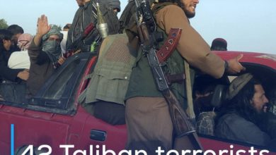 Photo of 42 Taliban terrorists killed in Afghanistan