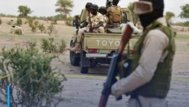 Photo of At least 19 people killed in west Niger attack