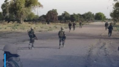 Photo of Niger army repels major attack by Boko Haram terrorists in Diffa