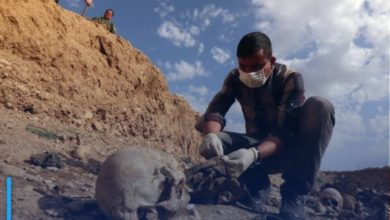 """Photo of Iraq: Discovery of a """"very large"""" mass grave in Diyala"""