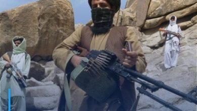 Photo of Terrorist Taliban kill 10 explosive ordnance disposal workers in Afghanistan