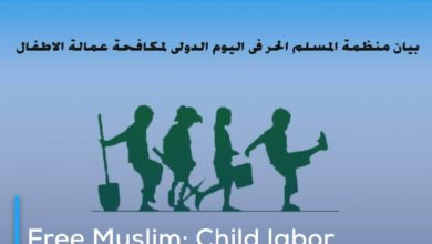 Photo of Free Muslim: Child labor monitoring statistics indicate dangerous rise in forced labor