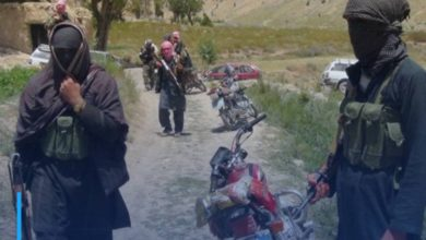 Photo of Afghan Defense: Several dead and wounded terrorists of Taliban